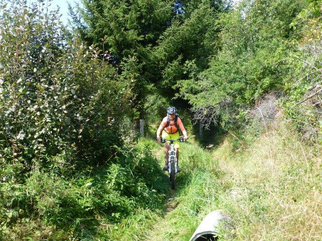 Prader Trailzauber - Halbtagstour