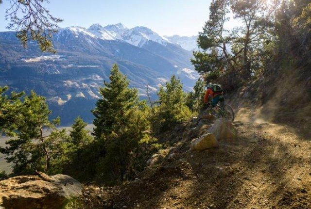 Propain Trail (Basic)