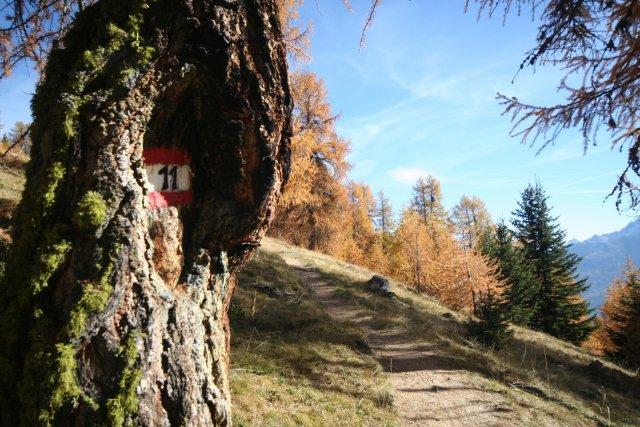 Nr. 020 Bike & Hike zum Glurnser Köpfl